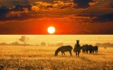 ЮАР – ЗИМБАБВЕ с водопада Виктория! Рев на диви  животни и  грохот на водопади!