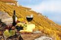 ФРАНЦИЯ – ПРОВАНС – по пътя на римляните, хубавото  вино и за ценителите на различното