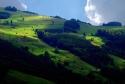 НОВА ГОДИНА в планинския курорт ЗЛАТИБОР в СЪРБИЯ със собствен транспорт! ИМА СВОБОДНИ МЕСТА